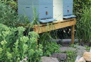 bijenkast verven