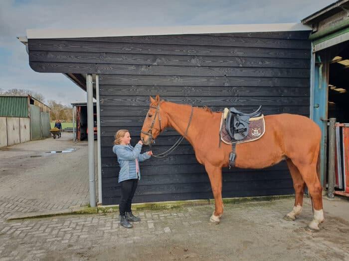 paardenstal verven paardenstal schilderen