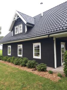 Huis Friesland Vasa Svart diepzwart