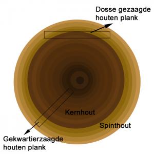 uitleg kromtrekken hout Boomstam doorsnede
